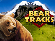 Медвежьи Следы – играй в клубе Вулкан